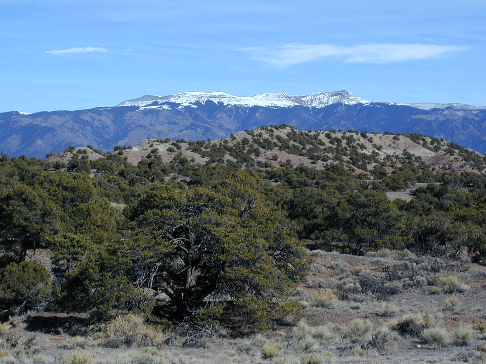 Southern Colorado Land for Sale By Owner